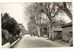Carte Postale La Roquebrussanne - La Rue Du Portail - La Roquebrussanne