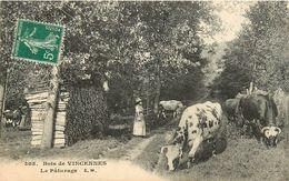 94 BOIS DE VINCENNES - LE PATURAGE - Vincennes
