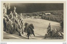 AK  Winterwald Rother Berg Cervena Hora - Repubblica Ceca
