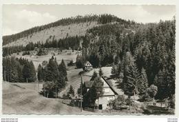 AK  Hundsbach Im Schwarzwald Hundsbachtal Viehläger - Deutschland