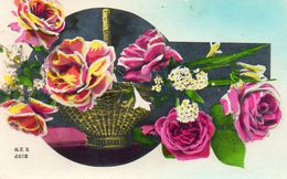 REX..2602 - Flores