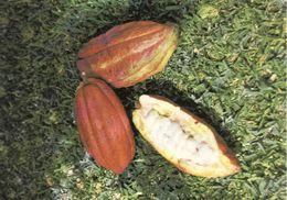 Antilles, Grenada, Cocoa, Unused - Grenada