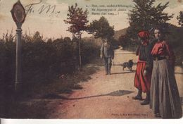 ALSACIENNE ( Voir Noeud Dans Cheveux ) à La Frontière - - Folklore
