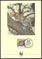 El Salvador - 1988 WWF, World Wildlife Found, Felis Pardalis, Tigrillo Ocelote, Animals, Endangered Species - FDC Card - El Salvador