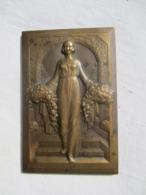 Plaque Médaille Bronze Signée Raoul BENARD - Altri