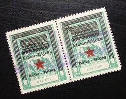 Fiume Croatia Italy Revenue Stamps Lire Due B33 - Occ. Yougoslave: Fiume