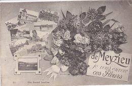 69 MEYZIEU Fantaisie Bouquet De Fleurs ,je Vous Envoie Ces Fleurs Avec Multivue - Meyzieu