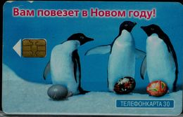 RUSSIA 2000 PHONECARD PINGUINS USED VF!! - Pinguins