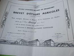 Diplôme Agricole/ Brevet D'Etudes Agricoles/Ecole D'Agriculture De NERMONT/Châteaudun/ E & L/JP DUVAL/ 1961 DIP230 - Diploma & School Reports