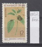 103K1852 / 1974 - Michel Nr. 771 Used ( O ) Corchorus Capsularis - Textile Plants , North Vietnam Viet Nam - Vietnam