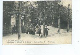 Scherpenheuvel Kruisweg Montaigu Chemin De La Croix DVD 11796 - Scherpenheuvel-Zichem