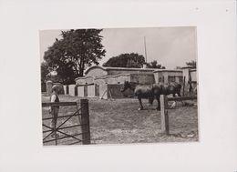 HORTIE NEAR LYMINGTON FARM BUILDING FOREVER CEMENT 20*15 Cm Fonds Victor FORBIN (1864-1947) - Métiers