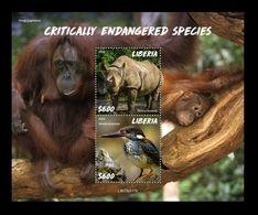 Liberia 2020 Mih. 7659/60 (Bl.825) Fauna. Critically Endangered Species MNH ** - Liberia