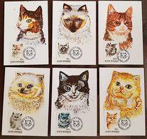 ROUMANIE Chats, Cats, Gatos,  Yvert N° 4076/81. 6 Cartes Maximums FDC 1er Jour. Complet - Gatos Domésticos