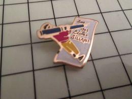 316a Pin's Pins / Rare & Belle Qualité !!! THEME : ADMINISTRATIONS / SOU DES ECOLES DE SILLANS - Administrations