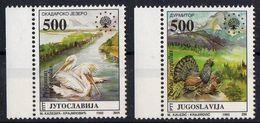 Yugoslavia 1992. European Nature Protection, Birds, Pelican, Wood-grouse, CAPERCAILLIE. Fauna.  MNH - 1945-1992 Repubblica Socialista Federale Di Jugoslavia