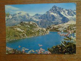 Le Valgaudemar , Lac Pétarel Et L'olan - Francia