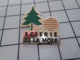 316b Pin's Pins / Rare & Belle Qualité !!! THEME : MARQUES / SAPIN SCIERIE DE LA MOLE Pourvu Que ça Dure ! - Marques