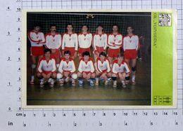 "Volleyball  Club ""Vojvodina"" From Novi Sad,Serbia,Yugoslavia,1981,Vintage Photo Postcard/SPORT1-37 - Volleyball"