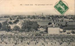 D46  CONCOTS  Vue Panoramique Côté Ouest - Montcuq