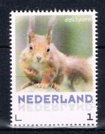 L 498 ++ NEDERLAND NETHERLANDS 2013 EEKHOORN EICHHORNCHEN SQUIRREL MNH ** - 2013-... (Willem-Alexander)