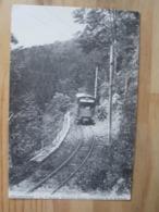 REPRO Gerardmer - Le Tramway Electriquefaisant L'ascension De La Schlucht - Gerardmer