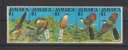 Jamaique 1982 Oiseaux 563-67 5 Val ** MNH - Jamaica (1962-...)