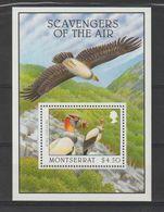 Montserrat 1997 Oiseaux BF 72 ** MNH - Montserrat