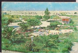 Albania - Carte Postale  - Durrës - Plazhi I Durrësit - Circa 1970 - Non Circulee - Cygnus - Albania