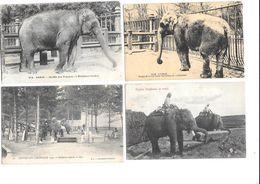 11699 - Lot De 4 CPA  ELEPHANTS - Elefantes