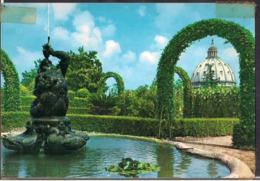 Vaticano - Carte Postale - La Cupola Di S. Pietro Dai Giardini Vaticani - Non Circulee - Circa 1970 - Cygnus - Vatican