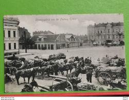 Lituanie, Stimmungsbild Aus Der Festung Kowno. Feldpoststation Nr209. Bataillon Nr27. 1915 - Lituanie