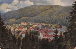 ST. BLASIEN AK 1919 - LUDWIGSLUST /T219 - St. Blasien