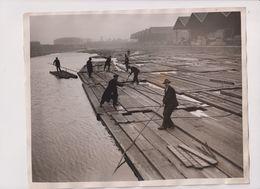 STORING TIMBER IN LONDON DOCK SURREY COMMERCIAL DOCKS  PORT OF LONDON   25*20 Cm Fonds Victor FORBIN (1864-1947) - Barcos