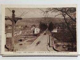63 - AMBERT - L'AVENUE DU PONT VUE DU BOIS DE BOULOGNE - ANIMÉE - Ambert
