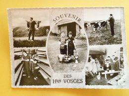 V10-88--vosges- Souvenir- Les Vosges Pittoresque- Avec Les Fermiers Des Hautes Vosges--chaume Du Drumont- - France