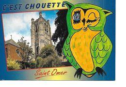 62 SAINT OMER Cpm La Cathédrale - Saint Omer