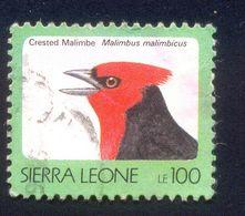 SIERRA LEONE 100 USED STAMP A72807 BIRD - Sierra Leone (1961-...)