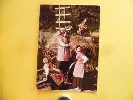 V10-88--vosges--bussang- Les Vosges Pittoresques- Costumes- Legende- Folklore-retour A La Maison- - Bussang
