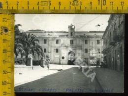 Vibo Valentia Soriano Calabro Palazzo Municipale (fotografia) - Vibo Valentia