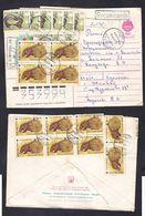 1994.Letter Kazakhstan - Russia. Animals. Porcupine. - Kazakhstan