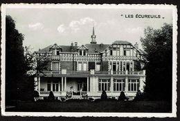 Woluwe-St-Pierre - Les Ecureuils - Façade Arrière - 443 Avenue De Tervueren - 2 Scans - Woluwe-St-Pierre - St-Pieters-Woluwe