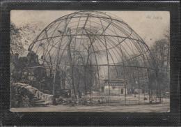 AK 0520  Dresden ( Zoologischer Garten ) - Flugkäfig Für Große Raubvögel Um 1916 - Dresden