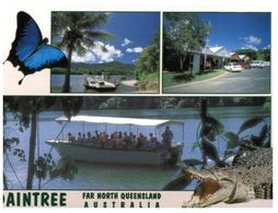 (B 11) Australia - QLD - Daintree With Crocodile - Far North Queensland