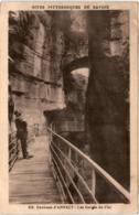 3XOM 445 CPA - ENVIRONS D'ANNECY - LES GORGES DU FLER - Annecy
