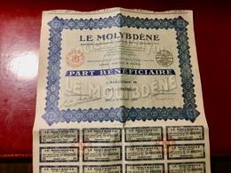 S.A.  LE  MOLYBDÈNE  --------------   Part  Bénéficiaire - Industry