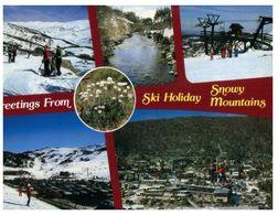 (B 12) Australia - NSW - Snowy Mountains - Altri