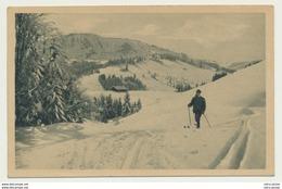 AK  Ski Wanderer Langlauf Oberstaufen  1923 - Oberstaufen