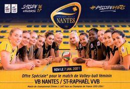 CPM - VOLLEYBALL FEMININ - EQUIPE VB NANTES ... - Edition Pub - Volleyball