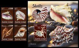 SIERRA LEONE 2020 - Shells, 4v + S/S Official Issue [SRL200216] - Sierra Leone (1961-...)